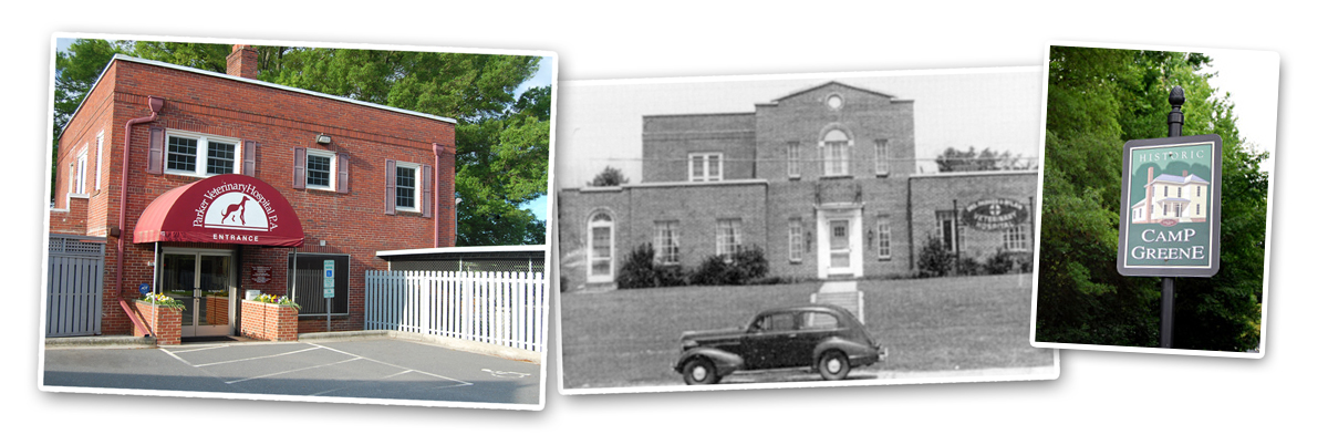 charlotte Vets- then & now